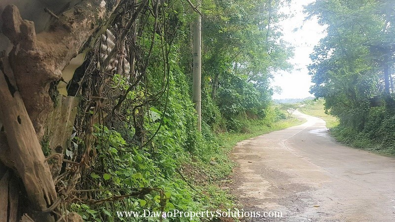 2 Hectares Farm Lot for Sale along Brgy. Communal Buhangin, Davao City