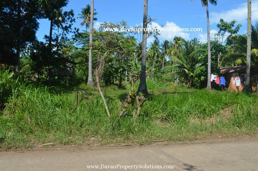 600SQM Vacant Lot for Sale at Catalunan Grande Davao City