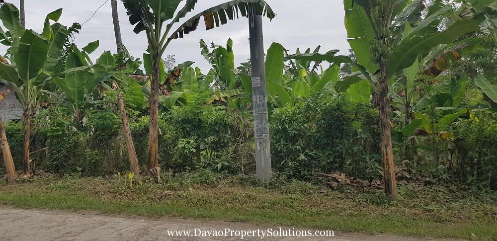 5245sqm Vacant Lot For Sale in Lasang Davao City
