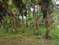 1785sqm Vacant Lot for Sale Davao City