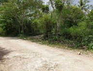 1481sqm Lot for Sale in Anonang Island Garden City of Samal Davao Del Norte