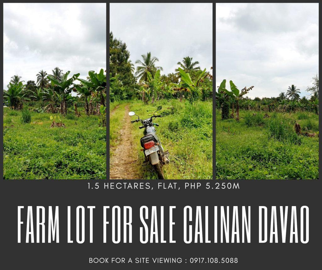 Farm Lot For Sale  Tamayong Calinan Davao City  1.5 Hectares...
