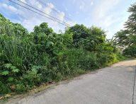 1766sqm Lot for Sale in Juna Subdivision Matina Crossing Davao City